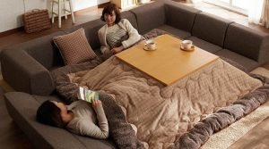 If You Love Sleeping Then Use This Awesome Japanese Bed Invention