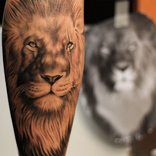108 Original Tattoo Ideas For Men That Are Epic: 35 Cool Lion Tattoo Designs For Men