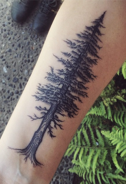 tree tattoo7