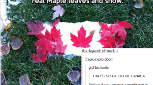 Tumblr is the place for Canadians that don't allow any crap (24 Photos)