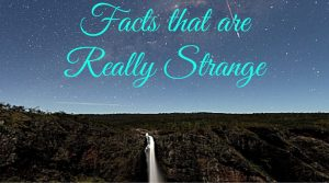 More than 15 Facts that are Really Strange