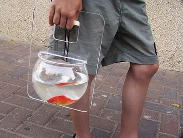 Now you can take your goldfish everywhere with you!