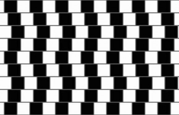 optical-illusions 10