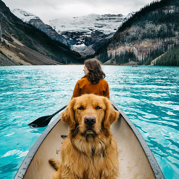 traveling-dog-aspen-the-mountain-pup-instagram-35_1453188316