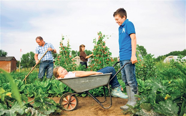 Get an allotment, but leave the kids at home  Image Source: telegraph