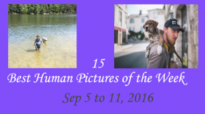 15 Best Human Pictures of the Week - Sep 5 to 11