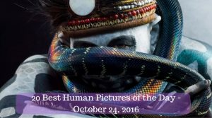 20 Best Human Pictures of the Day - October 24, 2016