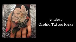 50 Best Orchid Tattoo Ideas